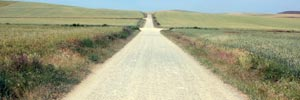 Camino de Santiago, across the wide meseta
